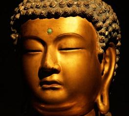 Pensieri, aforismi e frasi di Buddha