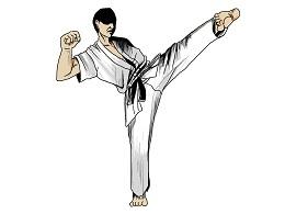 principi del karate